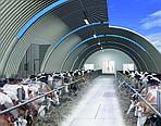 Использование кормовых добавок для повышения эффективности ферм