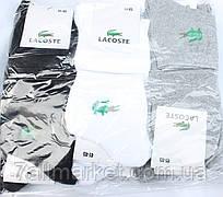"""Шкарпетки чоловічі спортивні бренд Lacoste розмір 41-45 (1уп/12пар) """"NEW SOCKS"""" купити оптом в Одесі на 7 км"""