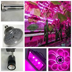 Світлодіодне led фитоосвещение для рослин.