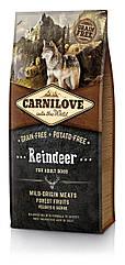 Сухой корм для взрослых собак Carnilove Reindeer с мясом северного оленя 12 кг