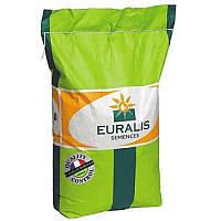 Семена подсолнечника Euralis Романтик ЕС Пончо