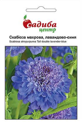 Семена скабиозы махровой лавандово-синяя 0,2 г, Hем Zaden, фото 2