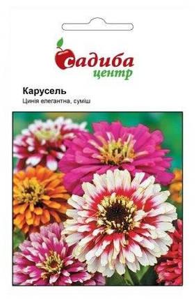 Семена циннии элегантной Карусель смесь 0,5 г, Hем Zaden, фото 2