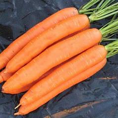 Семена моркови Берликумер 100г ИНКРУСТИРОВАННЫЕ