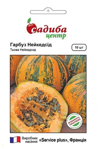 Семена тыквы голосеменной Нейкедсид 10 шт, Service plus