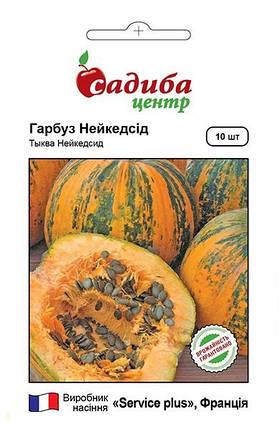 Семена тыквы голосеменной Нейкедсид 10 шт, Service plus, фото 2
