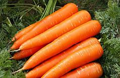 Семена моркови Королева осени 100г