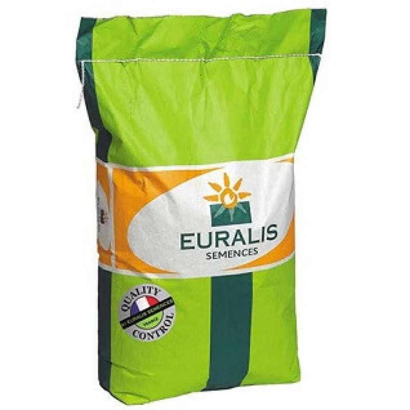 Семена подсолнечника Euralis Андромеда Пончо
