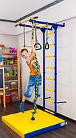Детский спортивный комплекс для дома Карусель 1 DSK-2305