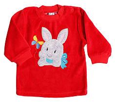 Джемпер   0520-20-160-012 74 см Красный