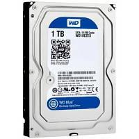 """Жесткий диск Western Digital Blue 3.5"""" 1TB 7200rpm 64MB WD10EZEX 3.5 SATA III, фото 1"""