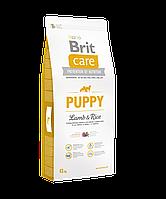 Сухой корм для щенков всех пород Brit Care Puppy All Breed Lamb & Rice 12 кг