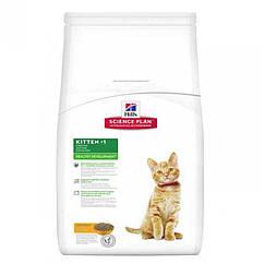 Hills SP Kitten корм для котят, беременных и кормящих кошек с курицей 10 кг