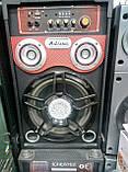 Активная акустика Ailiang , мощная портативная блютуз колонка, караоке, фото 2