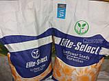 Гибрид ЕС Саксон устойчивый к семи расам заразихи A-G. Семена подсолнечника ЕС Саксон урожайные 42ц. Стандарт, фото 9