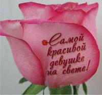 Наклейки на цветы с Вашими пожеланиями на 8 Марта