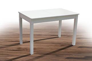 Стол обеденный Персей, фото 3