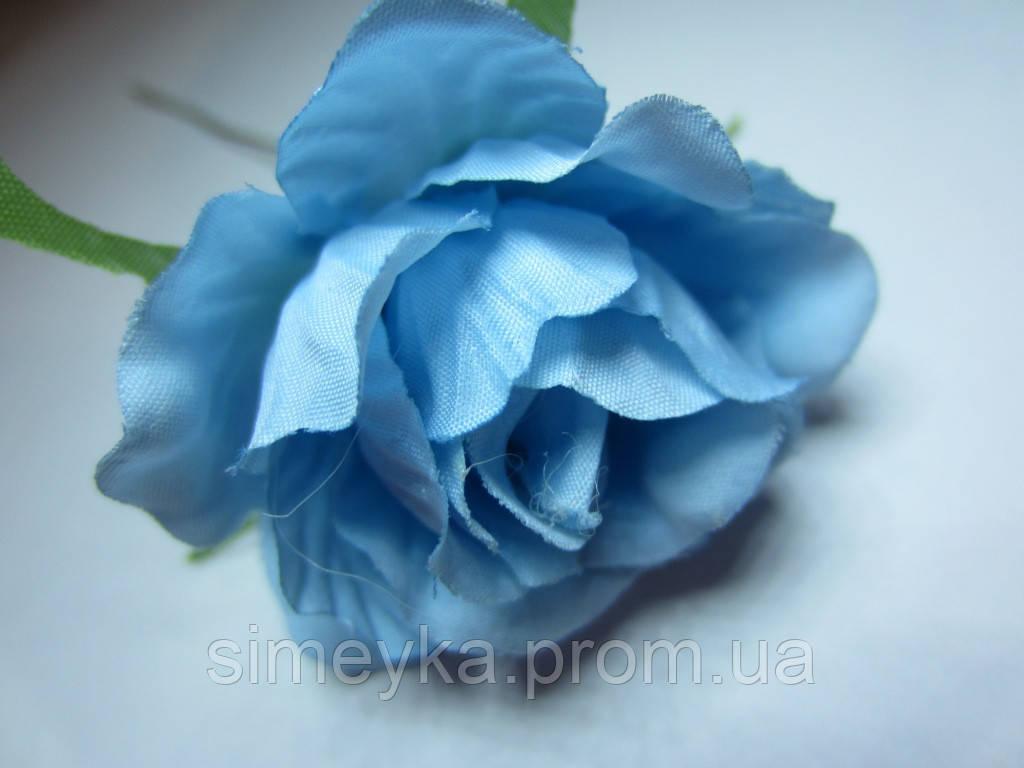 Роза распущенная голубая, диаметр цветка 5 см