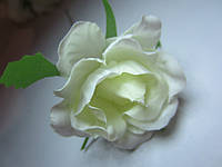 Роза распущенная молочная, диаметр цветка 5 см