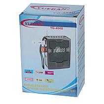 Радиоприёмник Радио FM + USB YUEGAN YG-404U PR3, фото 2