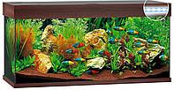 Аквариум Juwel Rio LED 180 коричневый