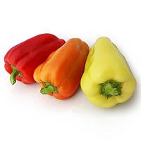 Семена перца сладкого Яника F1 (250 сем.) Kitano