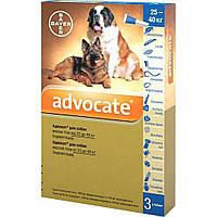 Bayer (Байер) Адвокат - для собак свыше 25кг (упаковка 3 пипетки, цена за 1 шт).