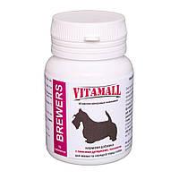 VitamAll (ВитамОлл) Кормовая добавка с пивными дрожжами и чесноком малые и средние породы собак 70т.