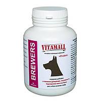 VitamAll (ВитамОлл) Кормовая добавка с пивными дрожжами и чесноком для крупных собак 90т/180г.