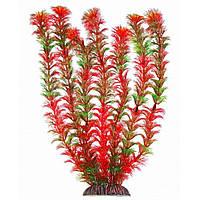 Aquatic Plants (Акватик Плэнтс) Аквариумное растение, 34 см х 6 шт/уп. арт.3465