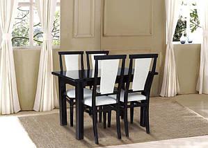 Комплект мебели Петрос + Чумак, фото 2