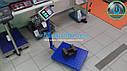 Вага до 300 кг ТКС К2, фото 4
