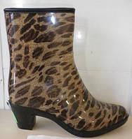 Модная обувь. Женские силиконовые сапоги