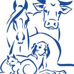 Товары для животных, ветеринария