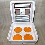 Инкубатор Рябушка на 70 яиц Smart plus с ручным переворотом и аналоговым терморегулятором, фото 4