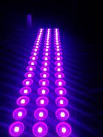 Светодиодный модуль Фиолетовый Hitled smd 2835 3 диода линза IP65, фото 1