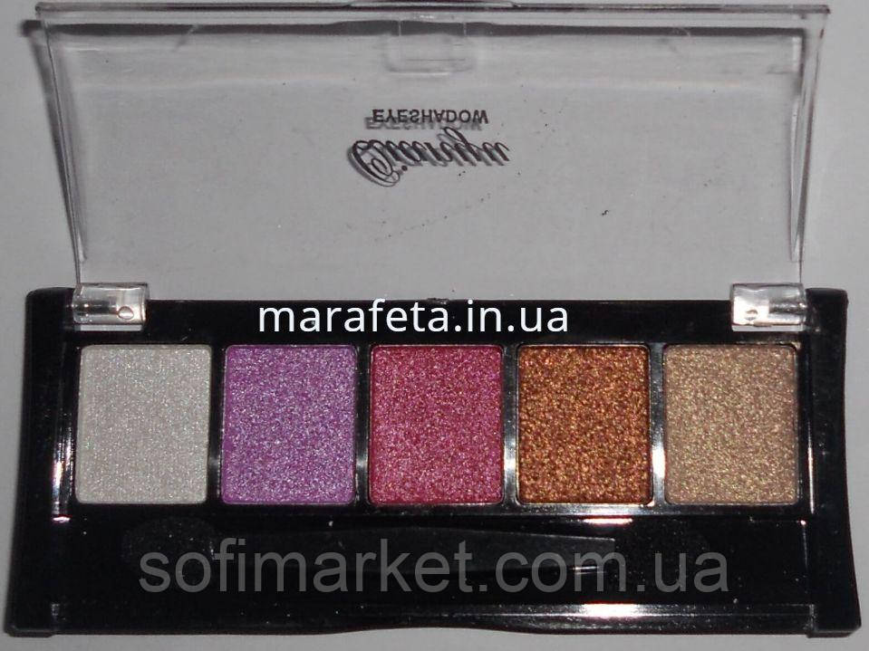 Тени для век Qianyu Eyeshadow 5в1, 24 в упаковке