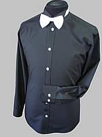 Рубашка под галстук бабочку черного цвета, фото 1