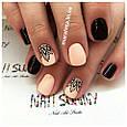 Набор машинка принтер штамп для дизайна ногтей стемпинга Голливудские ногти Hollywood Nails, фото 7