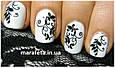 Набор машинка принтер штамп для дизайна ногтей стемпинга Голливудские ногти Hollywood Nails, фото 9