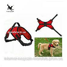Тяговая шлейка для выгула и дрессировки собак