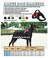 Тяговая шлейка для выгула и дрессировки собак, фото 3
