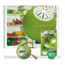 Шарики для устранения запаха в холодильнике Fridgebalis