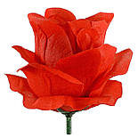 Рита-Роза итальянка, 9см (по 30 шт. в уп), фото 2