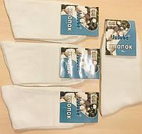 Шкарпетки чоловічі демісезонні бавовна JuJuBe розмір 41-47 F501