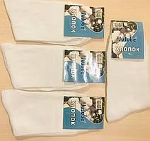Носки мужские демисезонные хлопок JuJuBe размер 41-47 F501