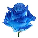 Рита-Роза итальянка, 9см (по 30 шт. в уп), фото 7