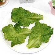 Искусственные листья салата 10шт бутафория муляж овощи имитация зелень