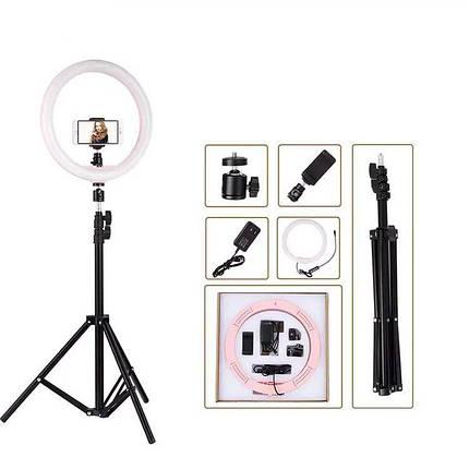 Кольцевой свет (комплект), профессиональная кольцевая светодиодная LED лампа для макияжа, студии (Ø 30 см), фото 2