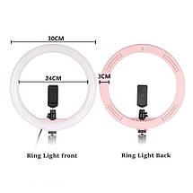 Кольцевой свет (комплект), профессиональная кольцевая светодиодная LED лампа для макияжа, студии (Ø 30 см), фото 3